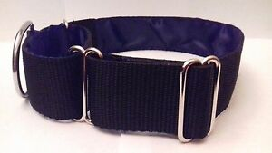 Black Martingale Dog Collar 1.5