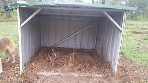 Extra Large Dog Kennel Logan Village Logan Area Preview