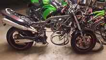 Honda hornet project bike Caboolture South Caboolture Area Preview