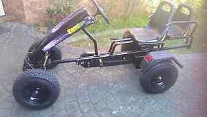Go Kart pedal powered dual seats Plumpton Blacktown Area Preview