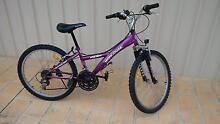 Girls Bike Branxton Singleton Area Preview