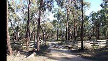 5 Acre Bush Block Dereel, Vic. Dereel Golden Plains Preview