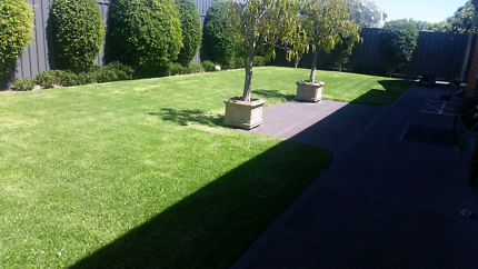 Magill & Surrounds Lawn Mowing & More