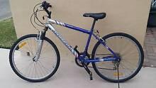 """mountain bike - men's 26"""" bicycle Malvern Star 18 spd alloy rims Belmont Lake Macquarie Area Preview"""