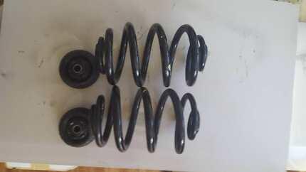 Commodore rear springs