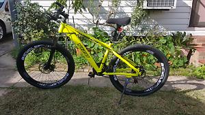Mountain bike Punchbowl Canterbury Area Preview