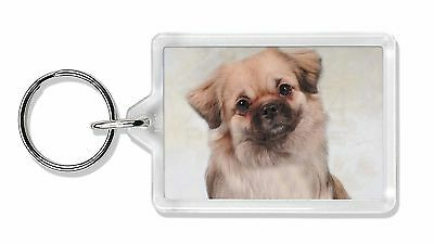 Tibetan Spaniel Dog Photo Keyring Animal Gift, AD-TS1K