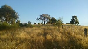 COOTAMUNDRA 11  ACRES with Great views 4 HRs SYDNEY Cootamundra Cootamundra Area Preview