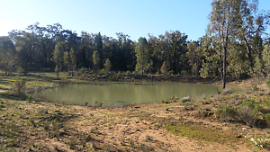 100 acres Land with power 3 bed room House  Rural Property Coonabarabran Warrumbungle Area Preview