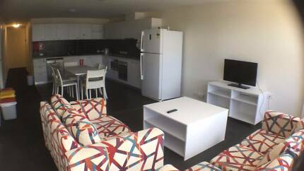 Private room for rent  AUD150/wk @ UC Cooper Lodge (1-31 Dec)