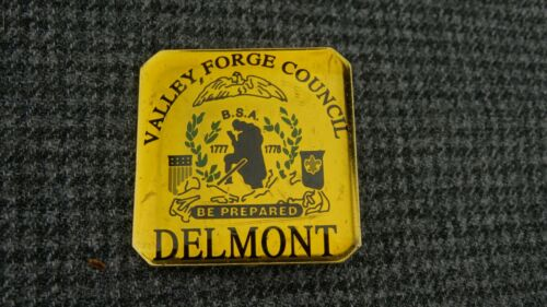 (B10) Boy Scouts of America BSA Valley, Forge Council Delmont Pin Vintage