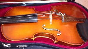 15 1/2 inches Beautiful Viola