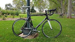 Ridley Damocles ISP 58cm (large) Kent Town Norwood Area Preview