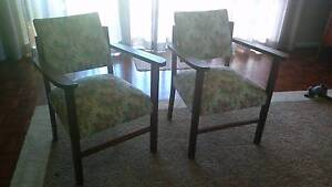Chat chairs x 4 Witta Maroochydore Area Preview
