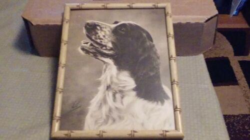 Vintage Framed Dog Print - English Springer Spaniel