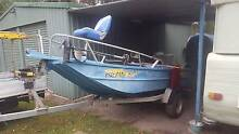Registered Tinny And Trailer Sell/Swap For Caravan Russell Island Redland Area Preview
