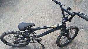 "BMX Iron Horse 20"""