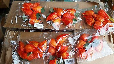 e (Physalis) in Orange NEU Floristik Bastelware Messeposten (Orange Lampions)