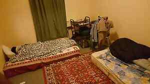 Single room for rent Belfield Canterbury Area Preview