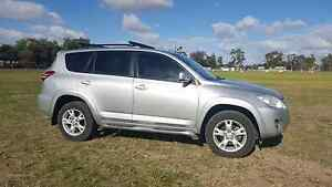 Toyota Rav4 Cruiser 2010 Jeparit Hindmarsh Area Preview