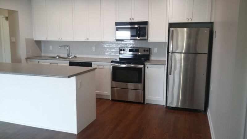 Renovated 2 bedroom apartment for rent in Guelph! | Long ...