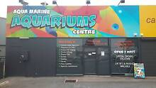 Aquamarine aquariums center Payneham Norwood Area Preview