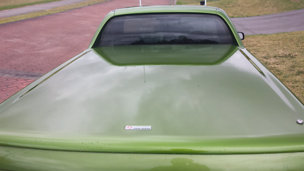 Holden vy hothouse green hardtop
