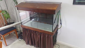 Fish Tank + stand + light + accessories Warner Pine Rivers Area Preview
