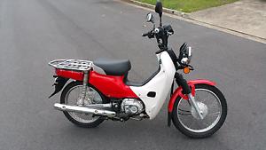 Honda cub 110cc Moped/Scooter Varsity Lakes Gold Coast South Preview