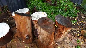 FREE - Tree Logs x 7 for pick up Raby Campbelltown Area Preview