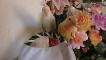 LOVEBIRDS , FULLY TAME , hand raised .MAKE CIRCUS TRICKS. Hillarys Joondalup Area Preview