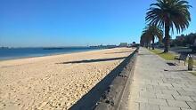 beach studio -suit professional -St Kilda beach St Kilda West Port Phillip Preview