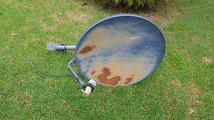 Satellite dish Maitland Maitland Area Preview