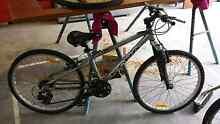 Kona mountain bike 24 Rathmines Lake Macquarie Area Preview