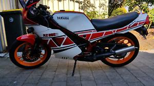 yamaha rz250r 1984