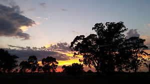 Wanting a rural rental in Loddon, Goldfields or Hepburn shires Bridgewater On Loddon Loddon Area Preview