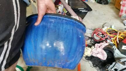 blue planting pots Hebersham Blacktown Area Preview