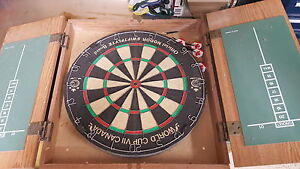 Dartboard with wood housing