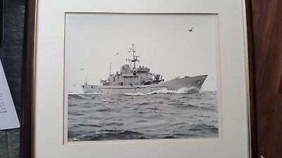HMS ANGLESEY -  P277  framed photograph  at sea  ebay uk