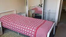 Clean and tidy room for girl/No bills/City central Surry Hills Inner Sydney Preview