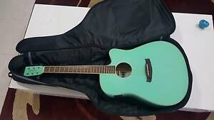 Steel String Sea Green Tanglewood Guitar with Case Blacktown Blacktown Area Preview