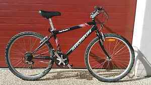 Shogun 26inch trail breaker  1 mountain bike Melton Melton Area Preview