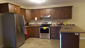 Luxurious 2 bedroom apartment close to Pembroke mall