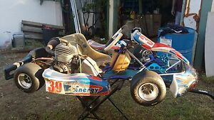 Kids kart can deliver to Perth this weekend 31/3/17 Kambalda East Coolgardie Area Preview