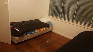 Looking for a House Mate to Rent a Room at the Palace Canley Vale Fairfield Area Preview