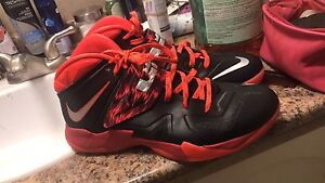 Size 12.5 Nike Lebron soldiers
