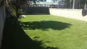 Synthetic Turf / Artificial Grass by LOOKS LIKE GRASS