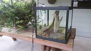 Reptile Enclosure Bulga Singleton Area Preview