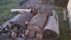 Free fire wood logs Cooranbong Lake Macquarie Area Preview
