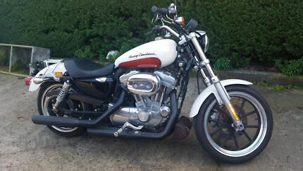 2011 Sportster Low Evandale Northern Midlands Preview